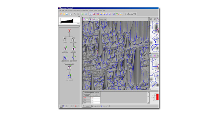 Gel imaging 2D Gel Image Analysis Software