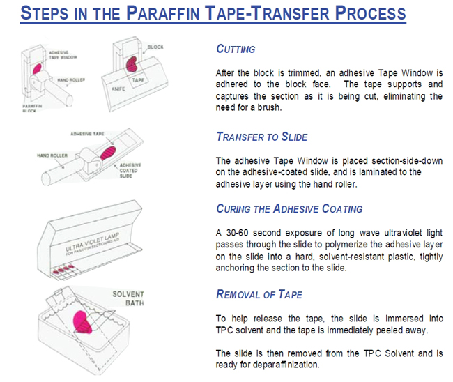 Sections are captured flat and uncompressed on a tape-window as they are cut and then transferred to an adhesive coated slide. It is very useful for difficult-to-cut paraffin sections, sections that are poorly fixed or poorly infiltrated. Sections are immediately ready for deparaffinization. It is the preferred method for tissue microarray sections. The method eliminates the need for the water bath and drying step.