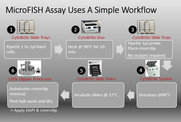 MicroFISH Assay System